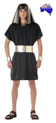 Mens Adult Ramses Egyptian Pharaoh King Tut Halloween Fancy Dress Party Costume - King Ramses Costume