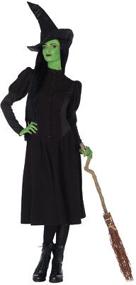 Elphaba Witch Adult Adult Women's Costume Halloween Black Stretch Jacquard - Elphaba Costumes
