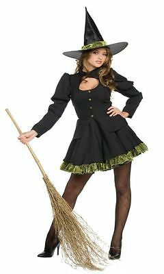 TOTALLY WICKED WITCH DRESS ADULT HALLOWEEN COSTUME WOMEN'S SIZE MEDIUM