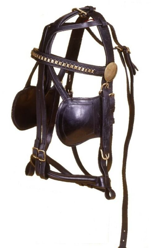 Leather Harness Bridle - Black Leather with Brass Hardware & Accents - 3 sizes