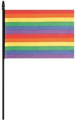 Rainbow Pride Flag Festival Parade Party Decorations](Parade Decorations)