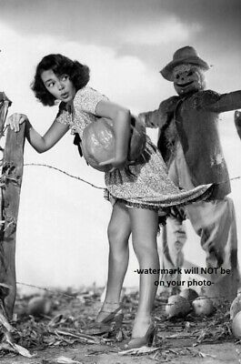 Creepy Halloween PHOTO Scary Scarecrow Sexy Girl Pumpkin Heels Halloween Freak - Scary Pumpkins Halloween