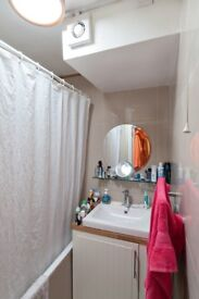 BEAUTIFUL BATTERSEA APARTMENT PERFECT FOR A SINGLE PROFESSIONAL OR HARD WORKING COUPLE