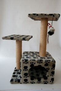 Scratching Post Maylands Bayswater Area Preview