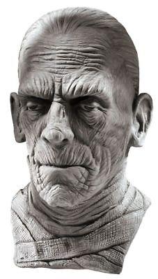 Mummy Adult Mask Rotten Realistic Gruesome Flesh Body Halloween