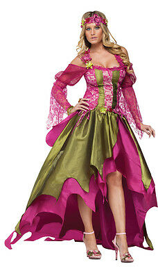 Fairy Queen Adult Womens Costume Renaissance Gown Corset Halloween (Fairy Renaissance Costumes)