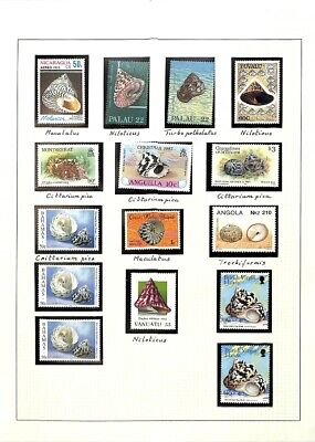 [OP7859] Worldwide Shells lot of stamps on 11 pages