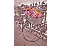 Bicycle Printed Canvas (new)