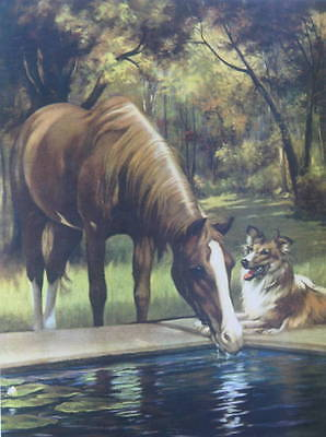 Horse and Collie vintage art