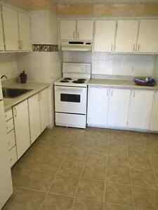 SPACIOUS AND CLEAN 4 1/2 SUBLET-IMMEDIATELY West Island Greater Montréal image 4