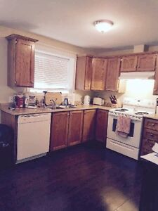 Beautiful 2 bedroom basement apartment for rent in Paradise!