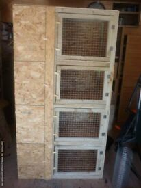 indoor rabbit/guinea pig hutches