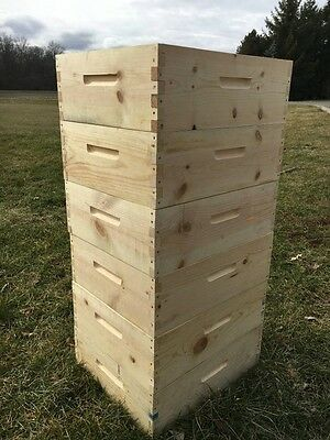 Bee Hive Medium Super