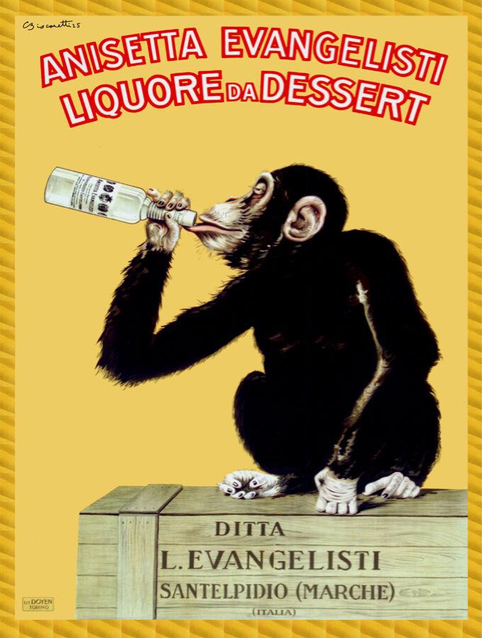 Quality POSTER.Anisetta Evangelist.Monkey drinking.Room Deco