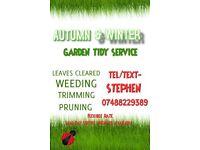 Garden Tidy Service