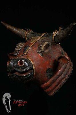 Discover African Art Bidjogo Bull Helmet Mask