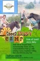 Pony rides/Pony Parties/Pony camp