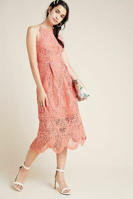 Pink Tea Party Dress (Anthropologie Eri + Ali Ava Lace Midi Dress Pretty Pink Garden Tea Party 8)