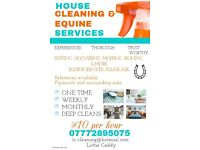 cleaner available, plymstock and plymouth