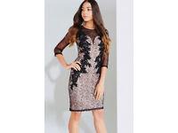 Little Mistress Black/Beige Lace Applique Bodycon Dress, L5708S1A, Size 8, Brand New, Tagged,£15 ono