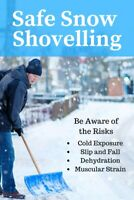 RESIDENTIAL AND SMALL BUSINESS SNOW CLEANING 6478188982