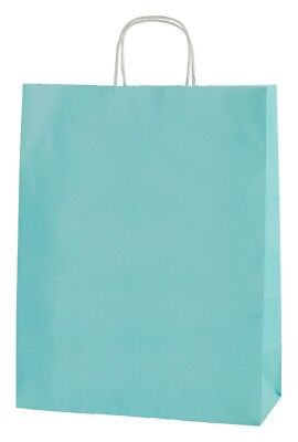 20 LIGHT BLUE TWISTED HANDLE KRAFT PAPER CARRIER BAGS LARGE 12.5