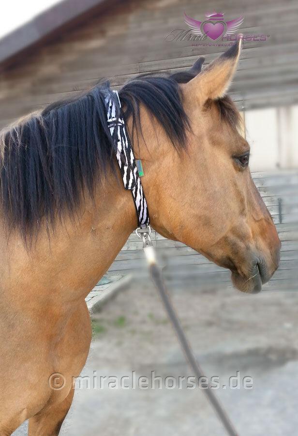 Bucas DUBLIN ZEBRA Neck StrapHalsriemen Halsband Pferd stabil leicht unisize
