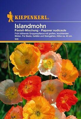 Islandmohn