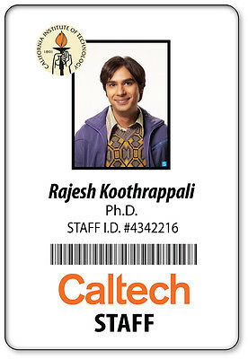 NAME BADGE HALLOWEEN COSTUME PROP RAJ KOOTHRAPPOLI BIG BANG THEORY MAGNETIC BACK - Big Bang Theory Halloween