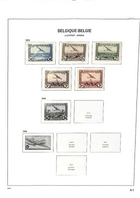 [OP7632] Belgium lot of stamps on 10 pages