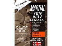 Learn the traditional martial art of Shotokan Karate