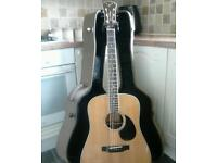 Freshman FA500 DE Top Quality Acoustic Guitar Taylor Martin beater