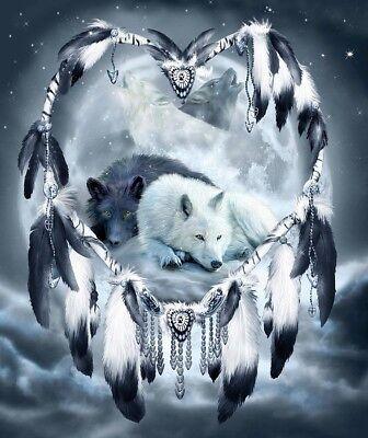 Native American Dream Catcher Night Wolves Of Love 8.5x11 Matte Art