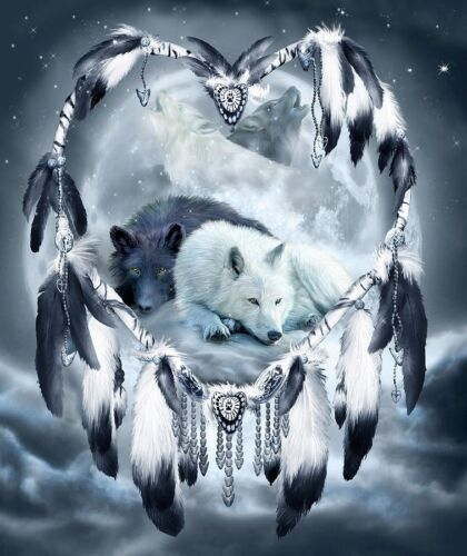 Please Read Dream Catcher Night Wolves Of Love 8.5x11 Matte Art For Framing