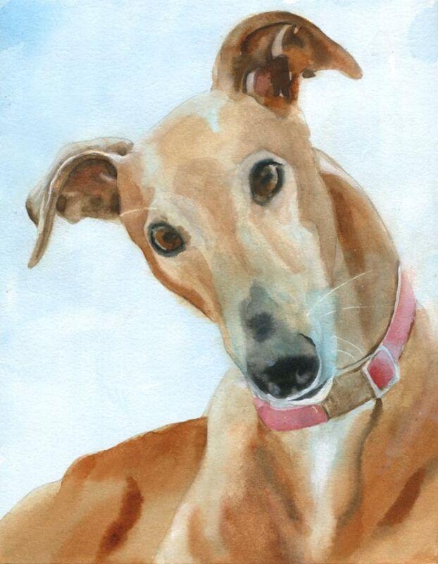 Giclee Print Greyhound Dog Watercolor Painting Art Grey Pet Portrait