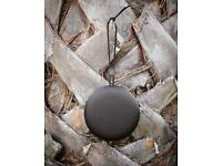Bang and Olufsen Beoplay A1 + Genuine B&O Leather Case