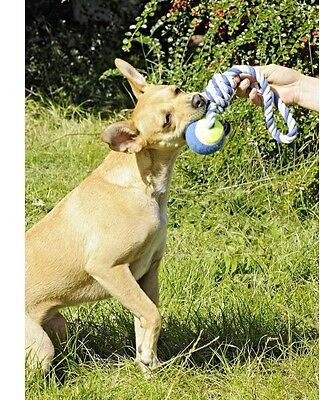 Schleuderball Hundespielzeug Ball am Seil Wurfball - Tennisball mit Schlaufe