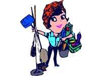 Housekeeper / cleaner available