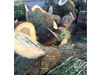 Un-seasoned hardwood logs for sale