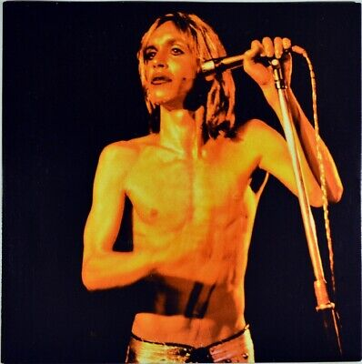 K8959 David Bowie and Iggy Pop UNSIGNED photo