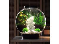 BiOrb 30L aquarium fish tank with intelligent LED light upgrade