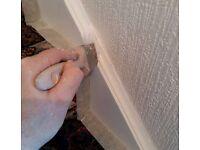 Painter & Decorator, Painter, Wallpapering, Coving
