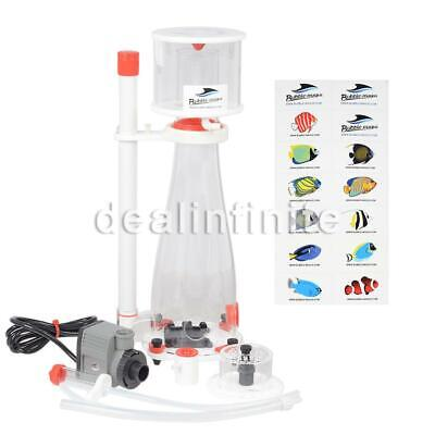 Bubble Magus Curve 5 In Sump Needle Wheel Protein Skimmer Re