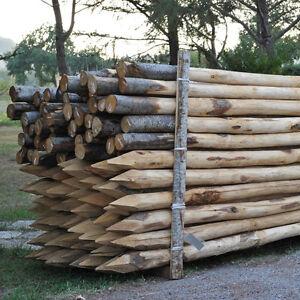 Pali castagno scortecciati 8 10 per recinzioni palizzate - Palizzate in legno per giardino ...