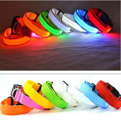 Wholesale 24 Pet Dog LED Lights Flash Safety Waterproof Nylon Collar S M L