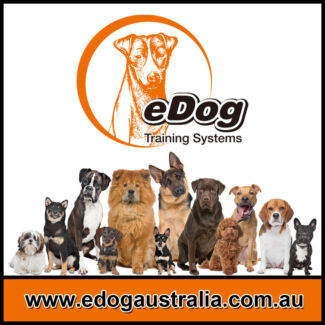 Bark Collar, Remote Training Collar,Containment System from eDog Welshpool Canning Area Preview