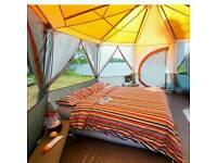 coleman cortes octagon 8 person tent
