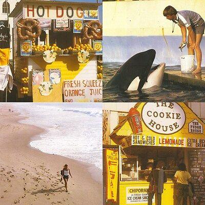 Best Coast Something In The Way Vinyl 7