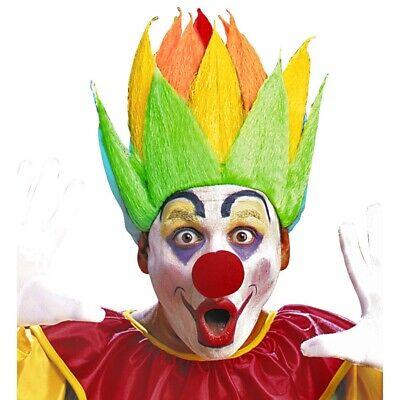 BUNTE PERÜCKE CLOWN Regenbogen Karneval Fasching Clownperücke Kostüm Party 6157