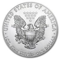 Stati Uniti 1 Dollaro Argento 1 Oncia Silver Eagle 2017 - 1 Oz Silver Coin Usa -  - ebay.it
